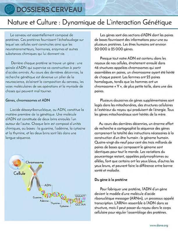 Nature and Nurture: Genetics (French)