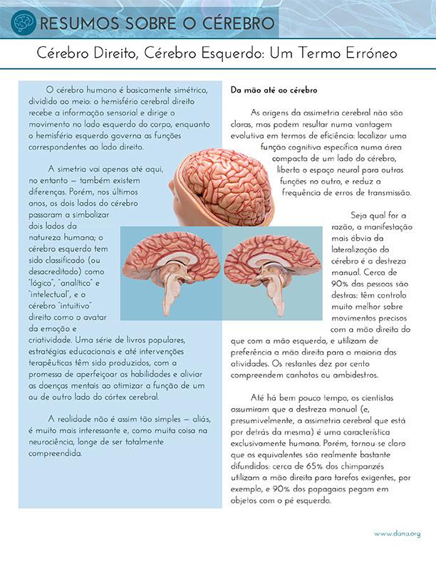 Right Brain, Left Brain: A Misnomer (Portuguese)