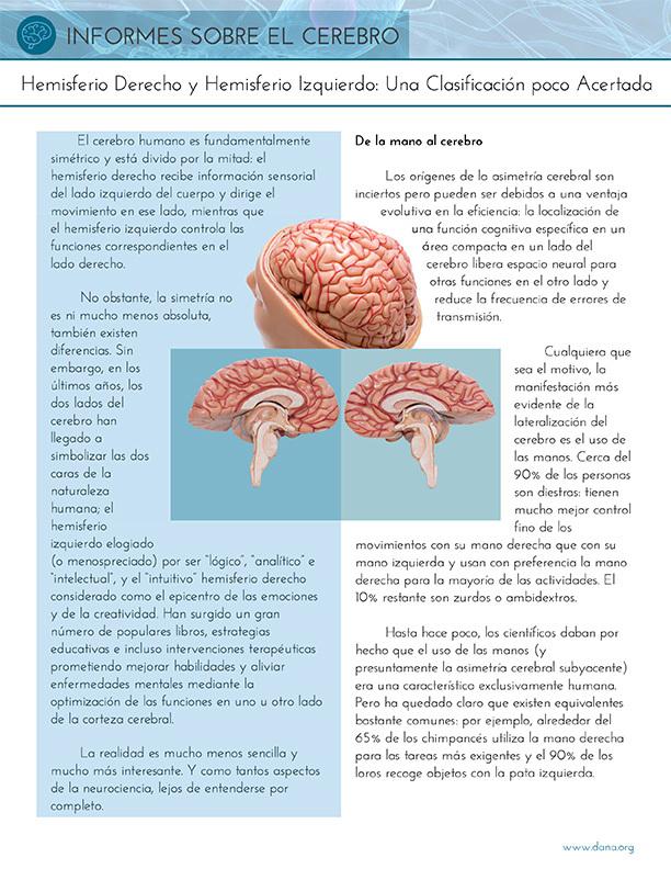 Right Brain, Left Brain: A Misnomer (Spanish)
