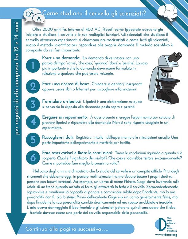 How do Scientists Study the Brain? Grades 6-8 (Italian)