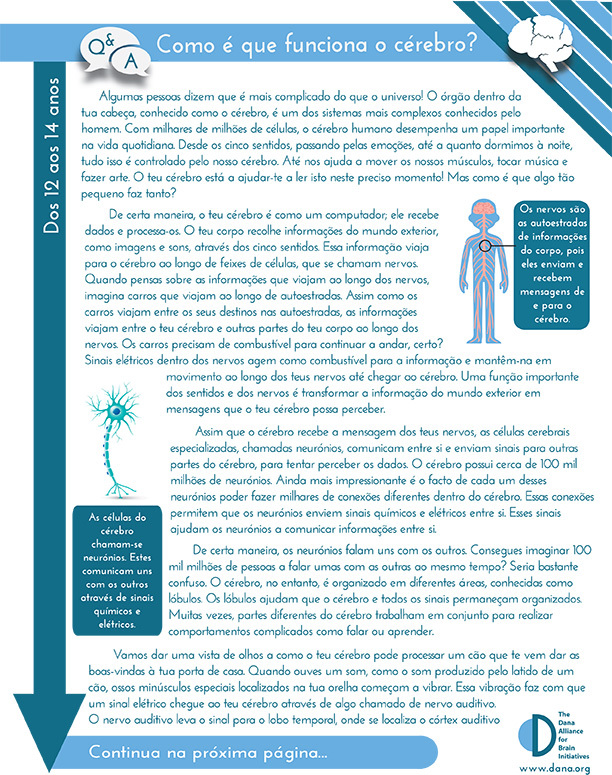 How Does the Brain Work? Grades 6-8 (Portuguese)
