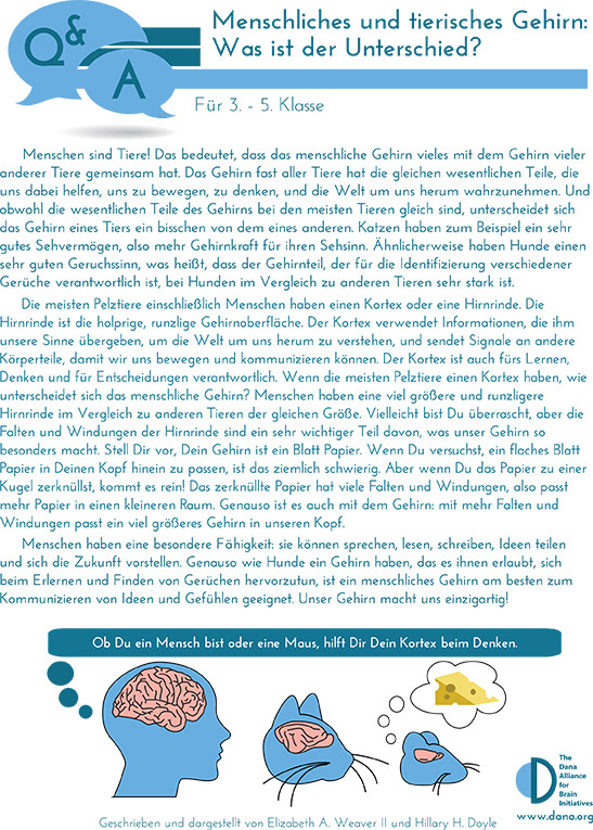Human & Animal Brains: How do they Compare? Grades 3-5 (German)