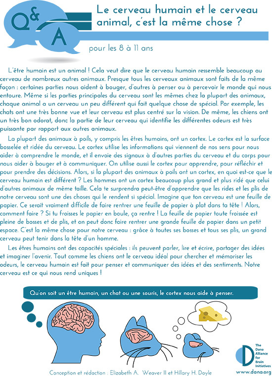 Human & Animal Brains: How do they Compare? Grades 3-5 (French)