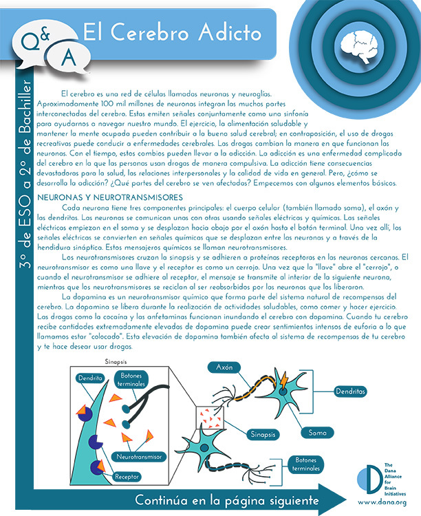 The Addicted Brain, Grades 9-12 (Spanish)