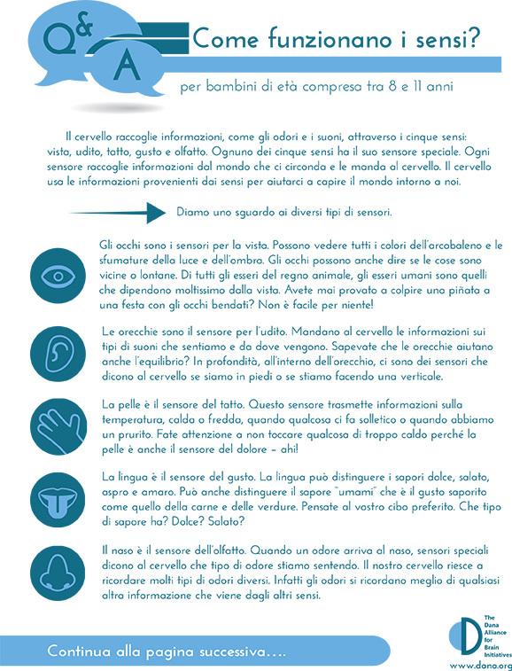 How Do the Senses Work? Grades 3-5 (Italian)