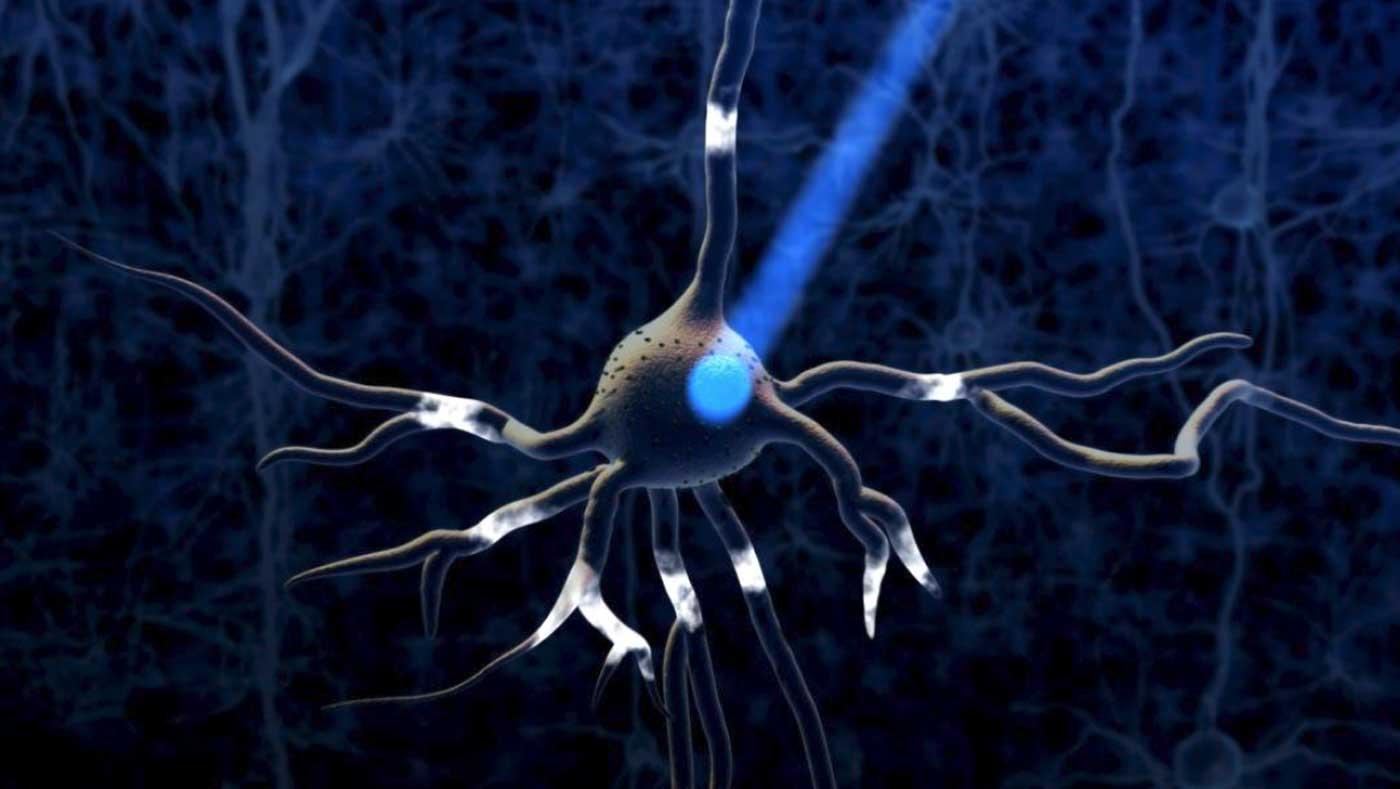 Cartoon of light hitting center of neuron