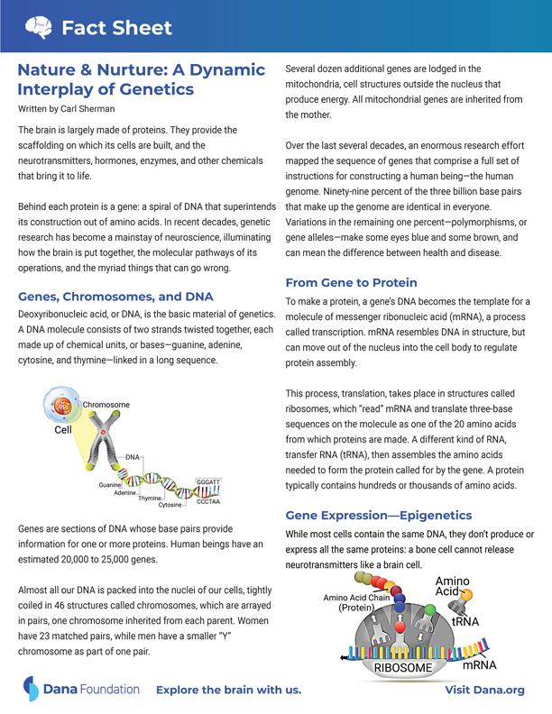Nature and Nurture: Genetics