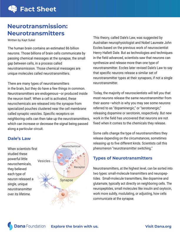 Neurotransmission: Neurotransmitters